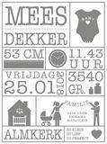 Geboortesticker gegevens | Muur & Stickers