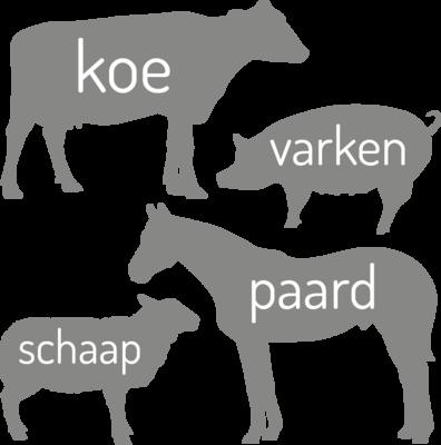 Muursticker 'Grote boerderij dieren'