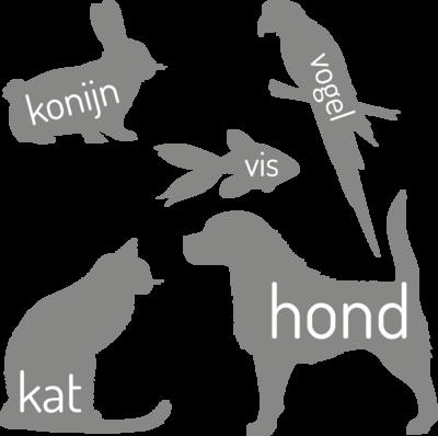 Muursticker 'Huisdieren'