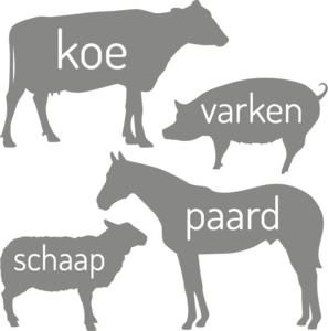 Muursticker grote boerderij dieren | muurenstickers.nl